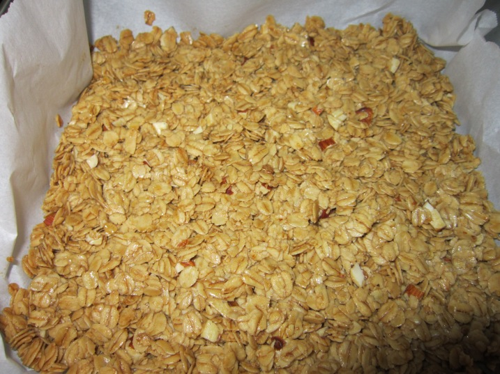 Almond Honey Oat Granola2