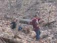 Our boys sliding down the steep slopes