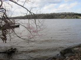 2013-04-19