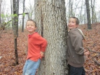 My cute boys hugging an old tree