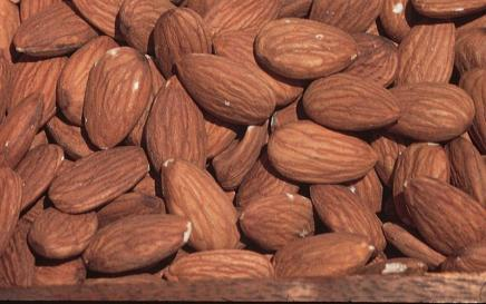 http://www.starkbros.com/products/nut-trees/almond-trees/all-in-one-almond