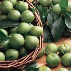 http://www.starkbros.com/products/fruit-trees/plum-trees/green-gage-plum