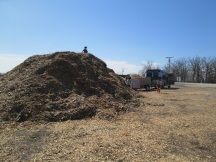 Here is the pile of woodchips in town that anyone can have free of charge. Very awesome resource!