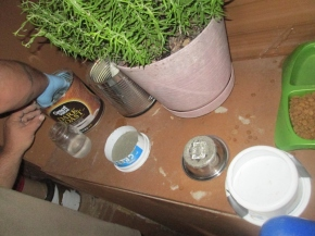 We made some forms using old quart sized yogurt container, and a 2 quart sized sour cream container..