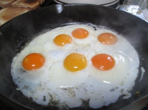 Breakfast, lookit those vivid orange yolks! mmmmm!