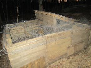 This is the original pen we built for the ducks on super short notice, out of pallets and poultry wire.